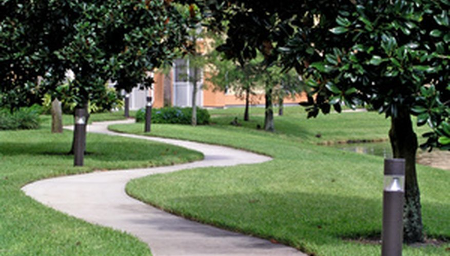 Add personality to your yard with a curved brick walkway.