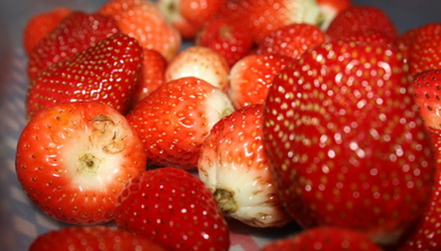 Strawberries naturally clone themselves as a form of reproduction.