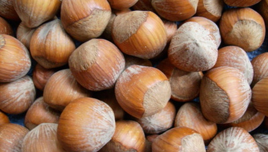 Hazelnuts, also called filberts, are high in healthy fat.