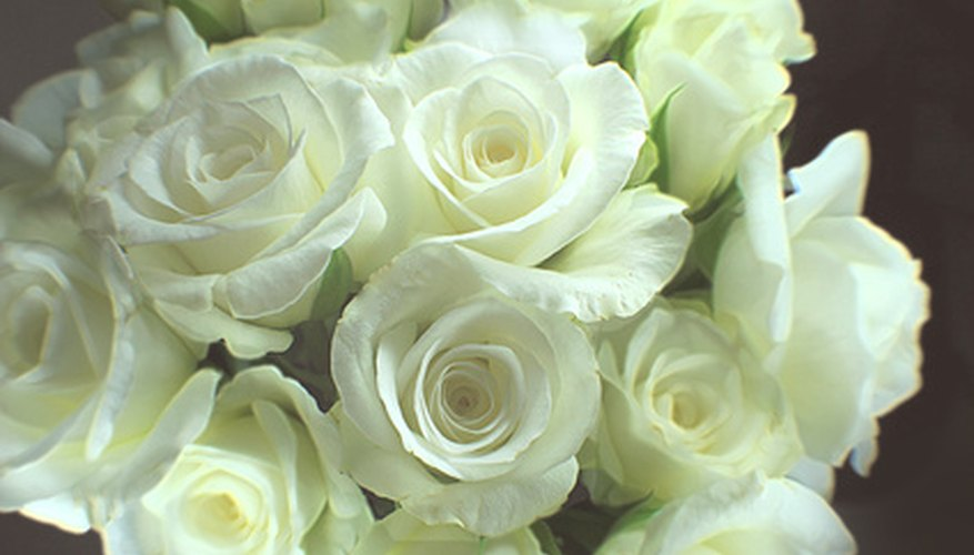 White roses can be sent upon a death.