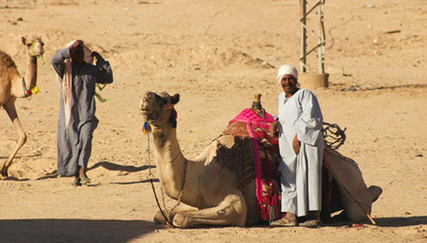 Lawrence of Arabia's costume is a blend between Arabian knight, like Aladdin and Bedouin tribesman.