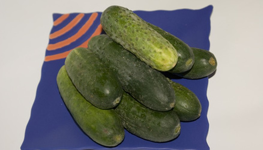 Two holes in the flesh of a cucumber could be a sign of a pickleworm infestation.