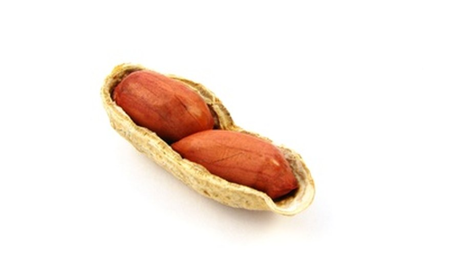 Roast peanuts in or out of the shell.