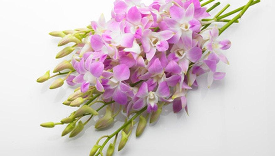 Various flowers can be encased in hot glue.