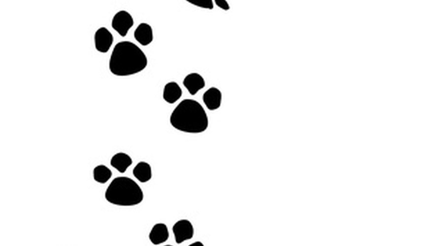 Make paw print symbols with a sequence of symbols and letters on your keyboard.
