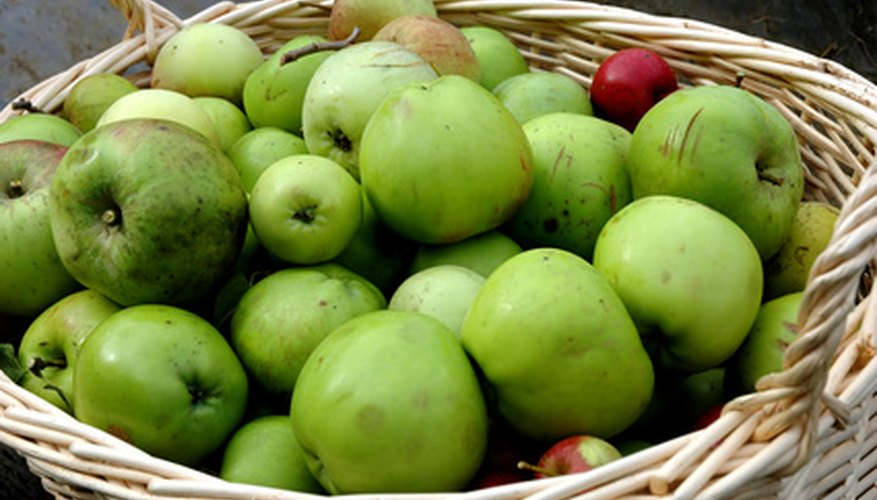Apples are on the