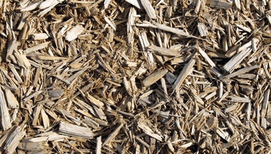 Residuos de la madera.