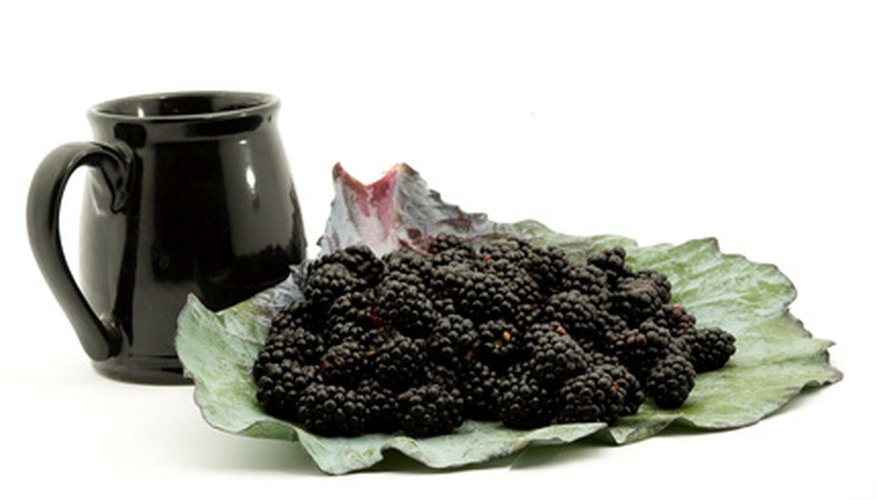 Blackberry vinegar can be used for medicinal or culinary purposes.
