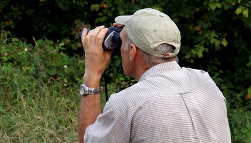 Observation can yield valuable first-hand information.