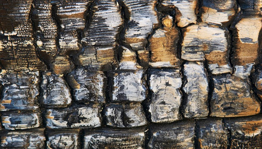 Charcoal is used medicinally to detoxify and decontaminate the body.