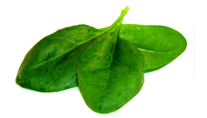 Spinach is one food high in oxalic acid
