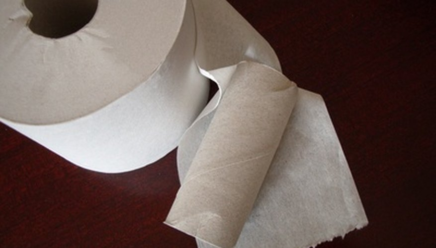 Transform empty toilet paper rolls into a cool science craft.