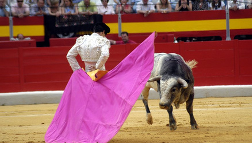 Matadors don brightly coloured costumes for bullfighting.