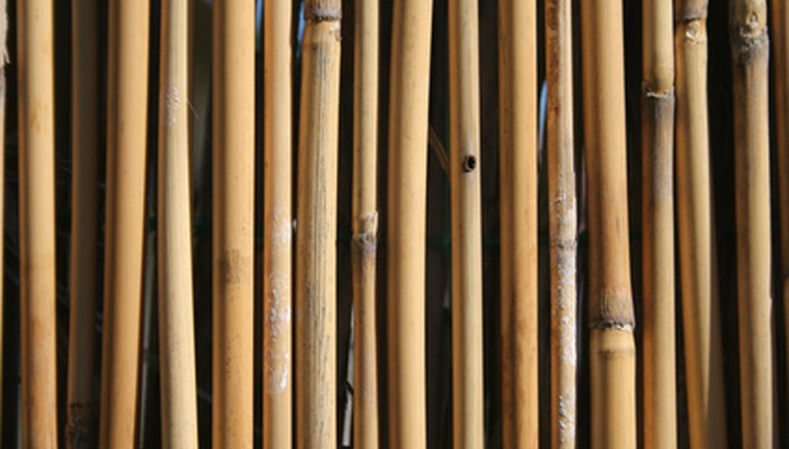 Bamboo is a very durable fencing option.