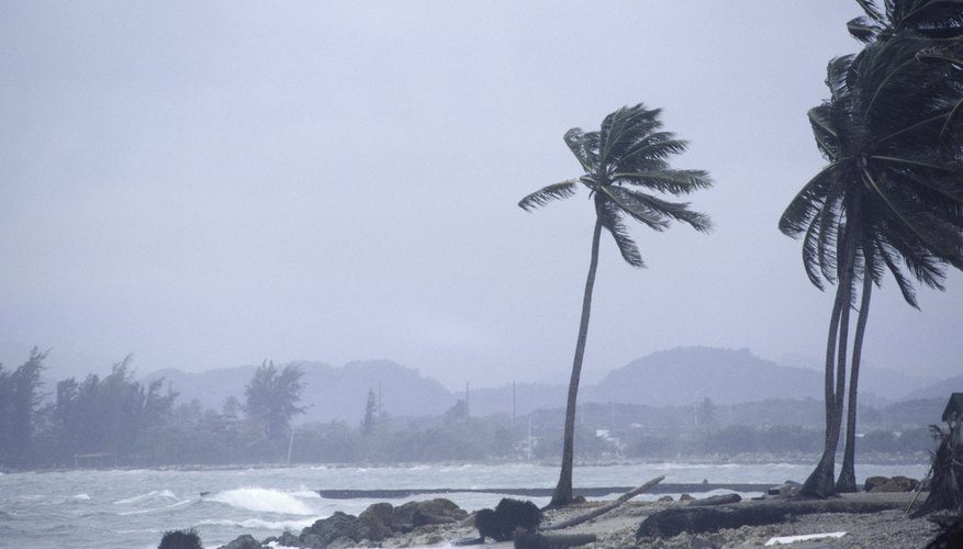 Strong winds can cause mechanical weathering of rocks.