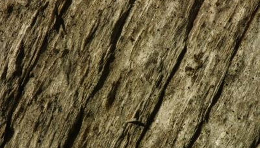 Rotten wood is highly porous and must be sealed before painting.