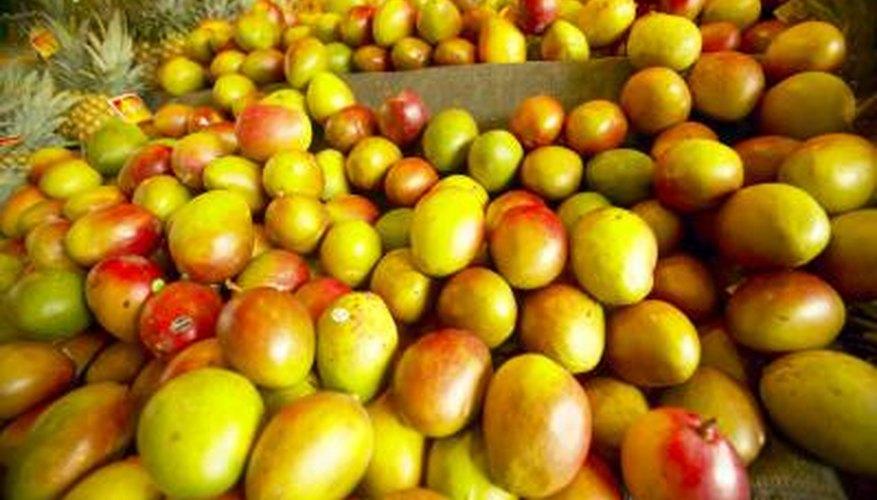 More than 1000 varieties of mango trees exist.