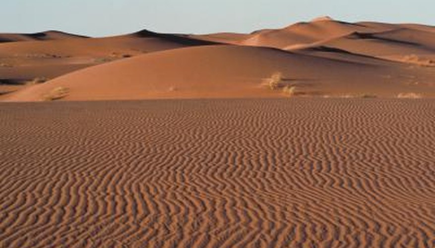 Some of the world's deserts are situated among plains.