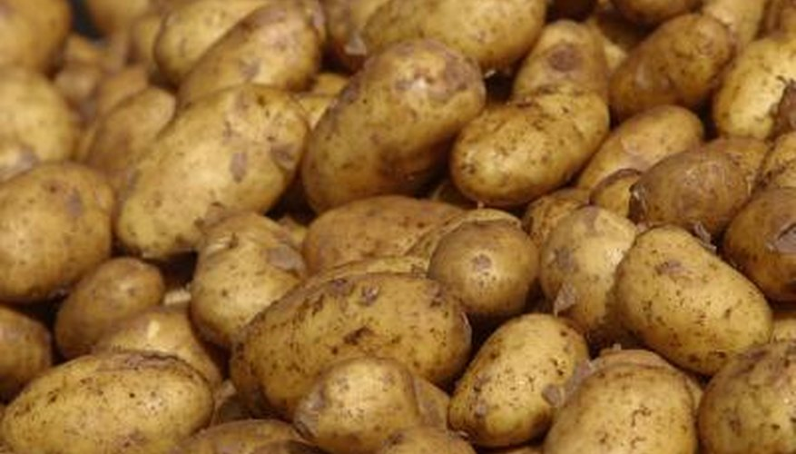 Potato wedges are large chucks of potatoes.