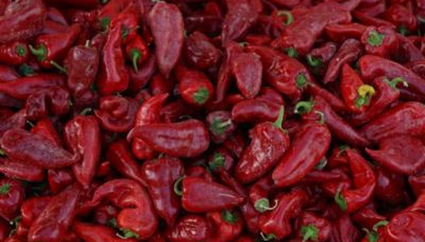 Ground red peppers create the zippy flavour of paprika.