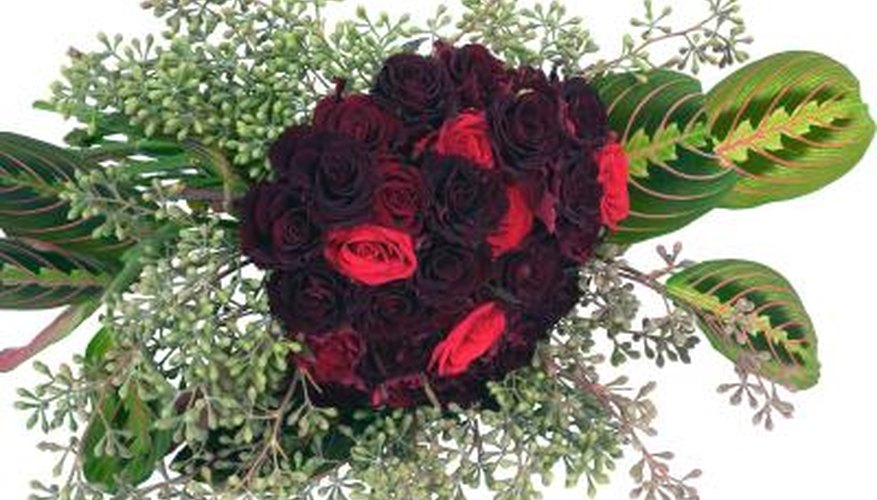Black Baccara and Black Magic roses are deep burgundy, nearly black flowers.