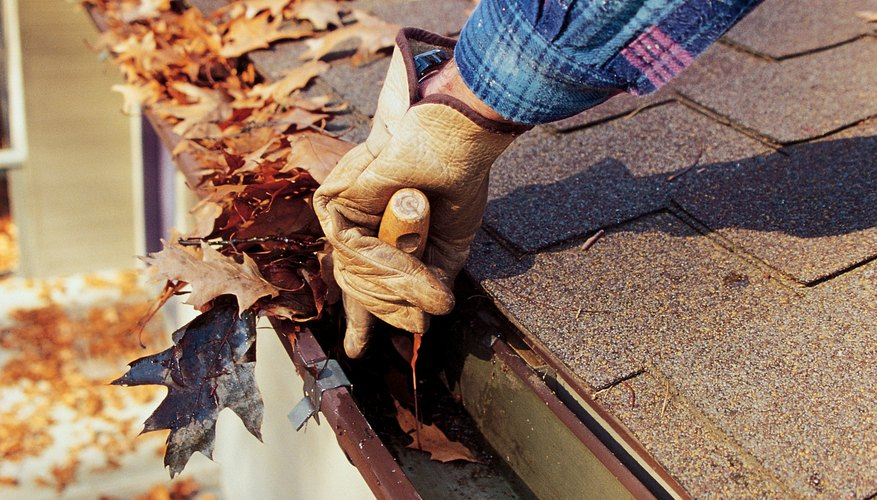 Clear debris from gutters for cash.