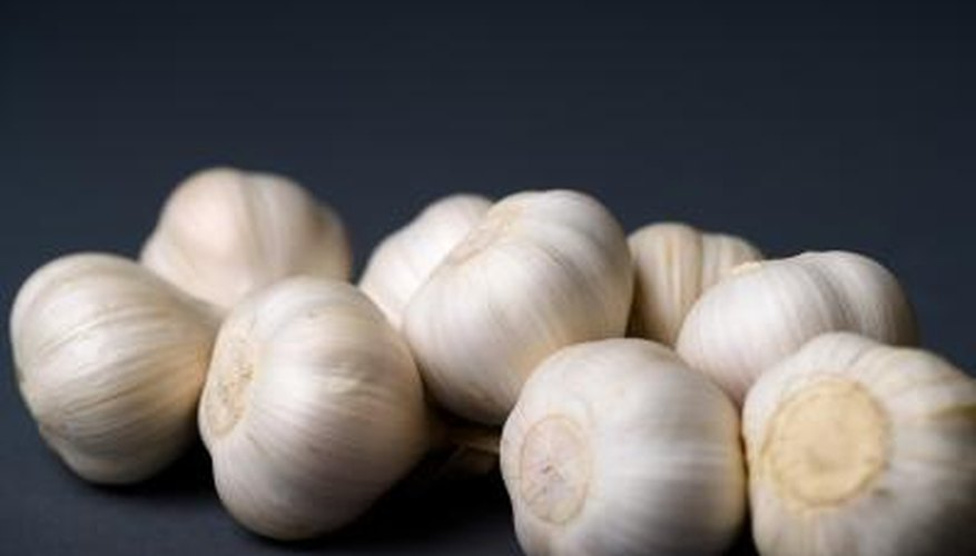 Consume 2-3 cloves of garlic per day to help combat a pinworm infestation.
