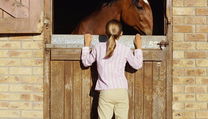 Split doors are the best option for stables.