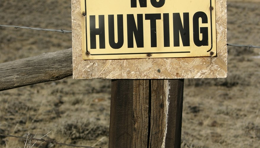 Sunday hunting is not allowed in certain designated areas.