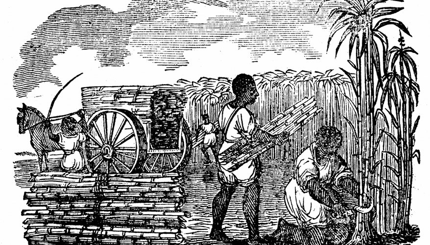 West Indies Africans, exchanged for Pequot Indians, sailed the Desire to American slavery.