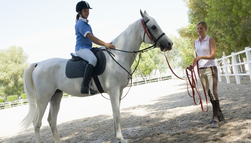 With an equine studies degree you could work as a riding instructor.