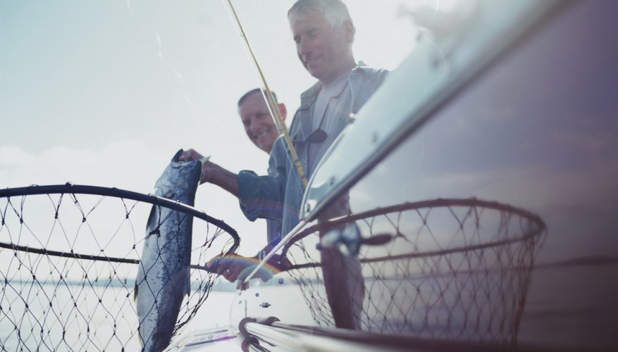 Two men fishing from boat