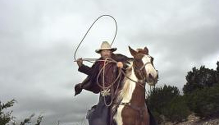 The rope used for calf roping is called a lariat.
