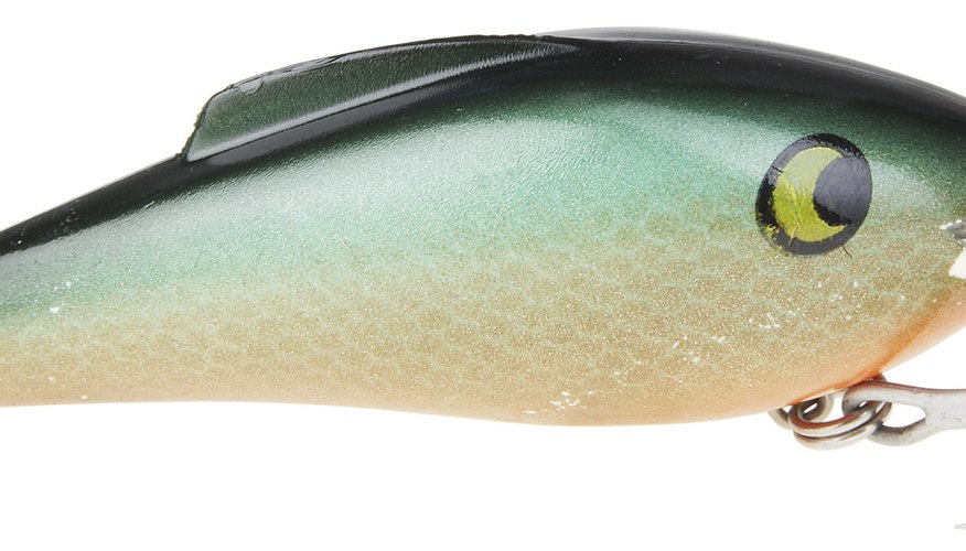 Crankbaits are among the most popular bass fishing lures because of their versatility.