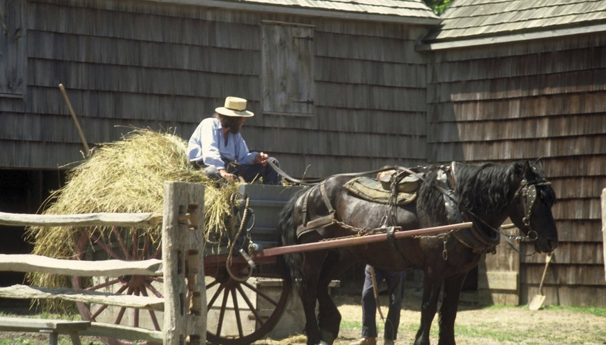 Many Amish farmers still use horse-drawn wagons.