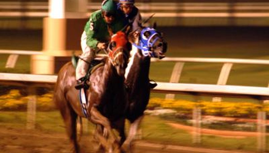A jockey's income is determined largely by the number of wins.