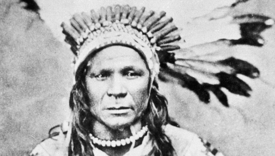 Chief Crow Flies High struggled to maintain Native American culture during the Plains War period.