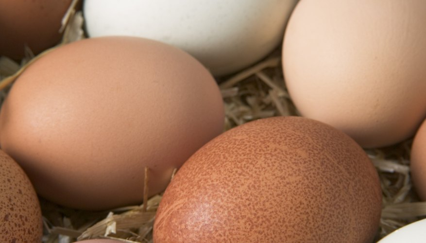 Eggs can taste delicious if cooked properly to stop the smell.
