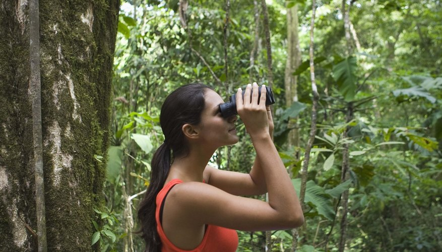 Ecotourism can be a rewarding experience for people, but not always for biodiversity.