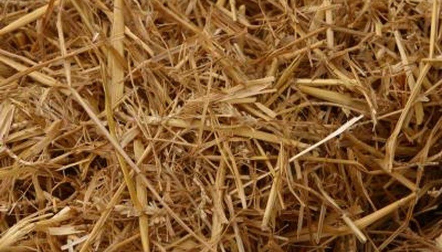 Wrap straw in chicken wire to make straw animal sculptures.