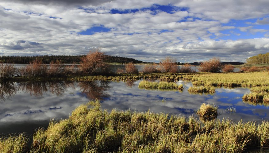 National Forest Lake, Laramie, WY.