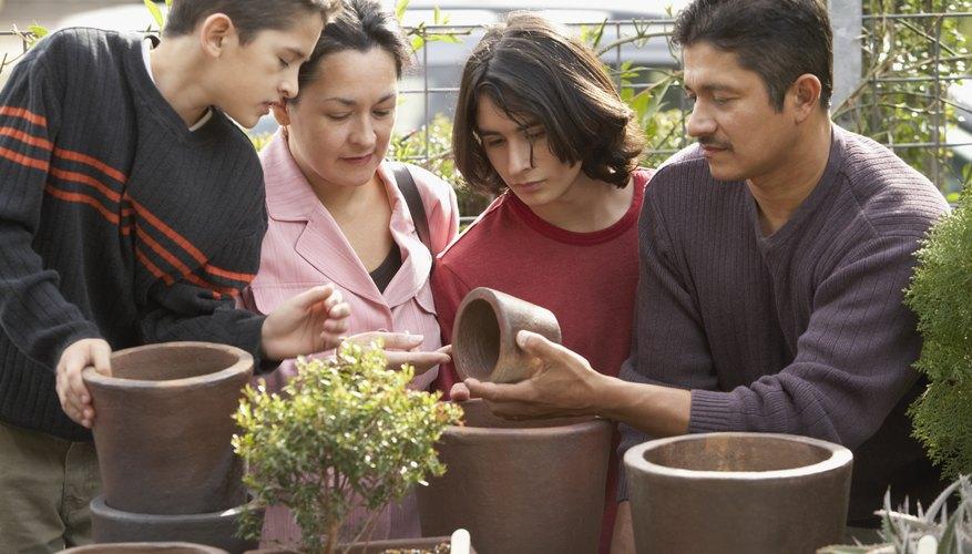 Un vivero de plantas necesita tener acceso a agua limpia y segura.