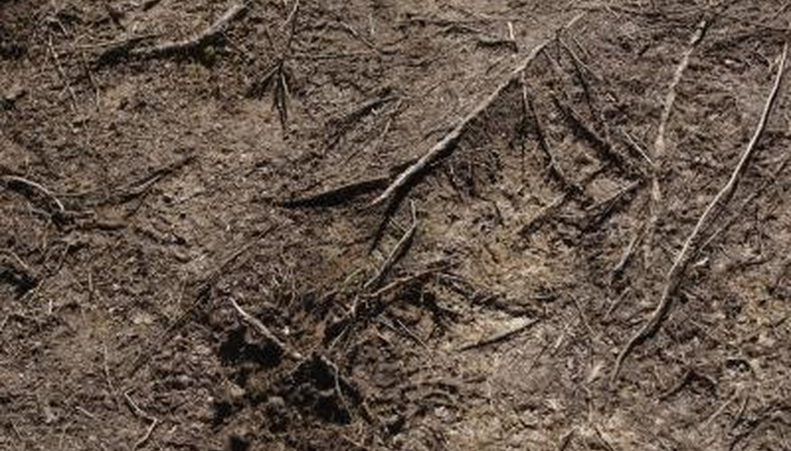 Newmark's chart is used in soil science.