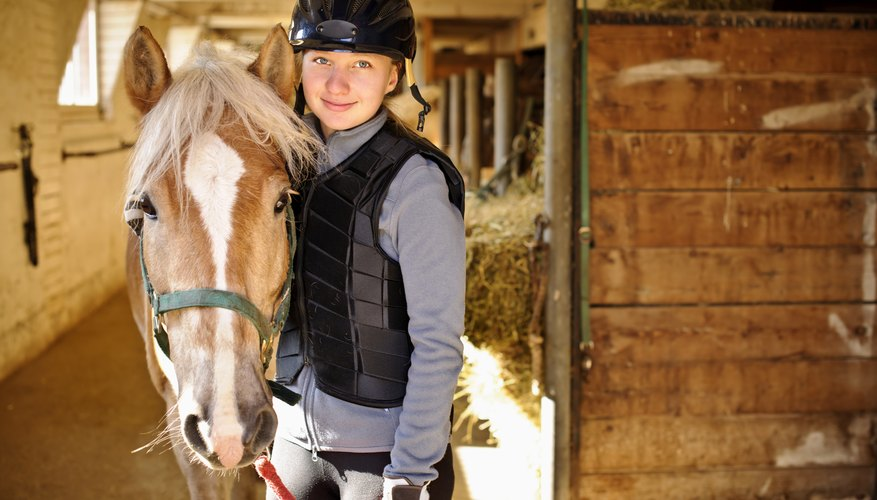 Over 50 schools in the United States offer equine studies bachelor's degrees.