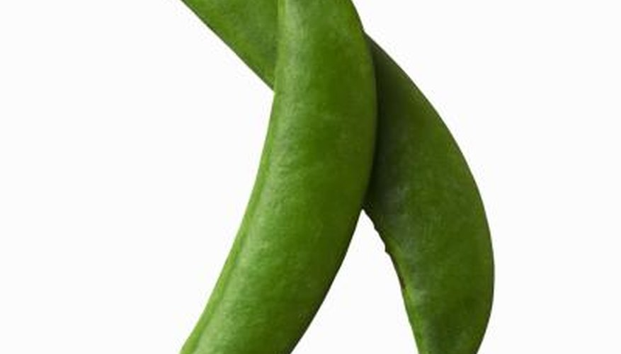 There is no need to discard any part of the mangetout, except for any strings or the ends.