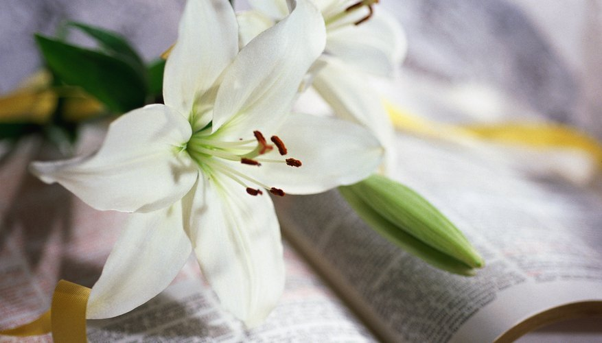 Lent is a period of renewal and preparation for the coming Easter holiday.