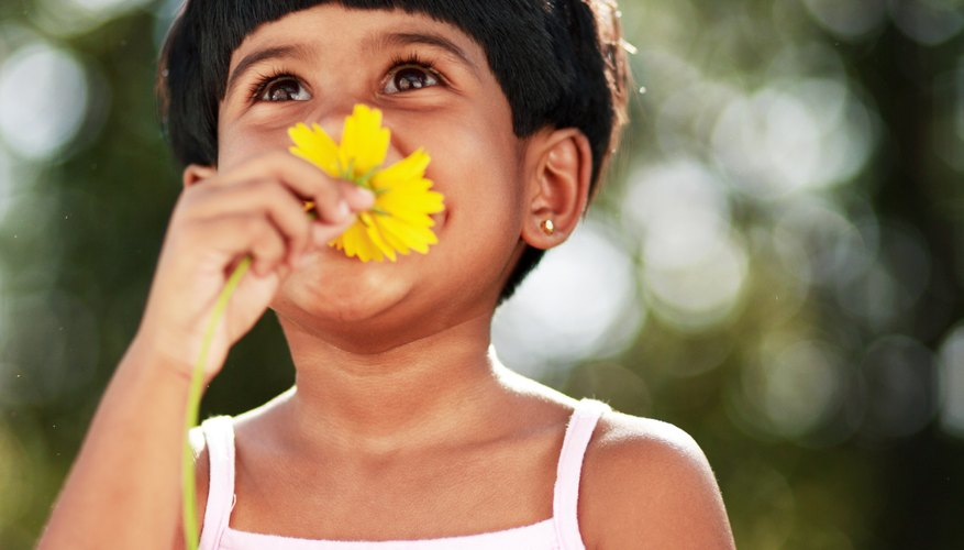 Introduce your child to poems about flowers.