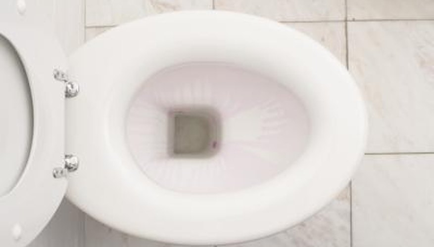 A toilet bowl can overflow, causing extensive water damage to the house.