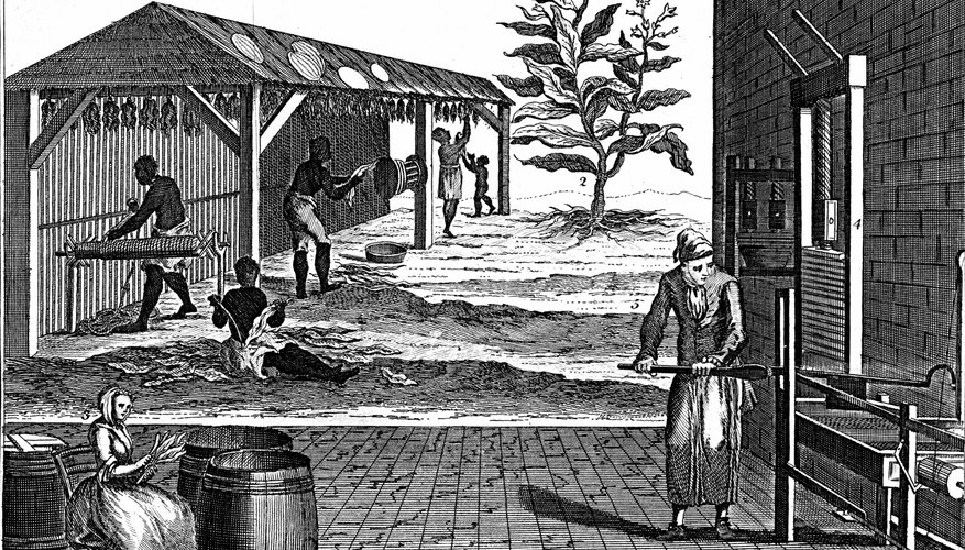 Tobacco first created the need for slave labor in Virginia