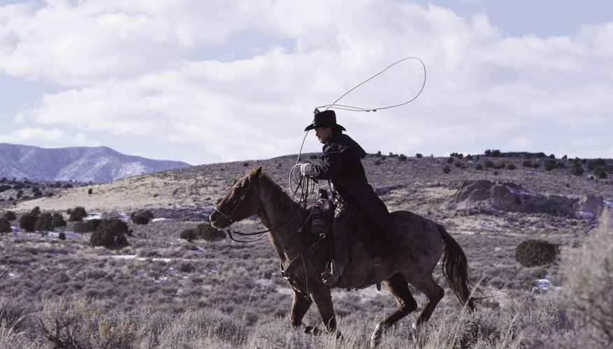 Cowboy riding his horse with lasso in hand.